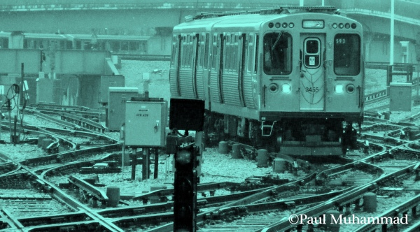 Photograph three: Train